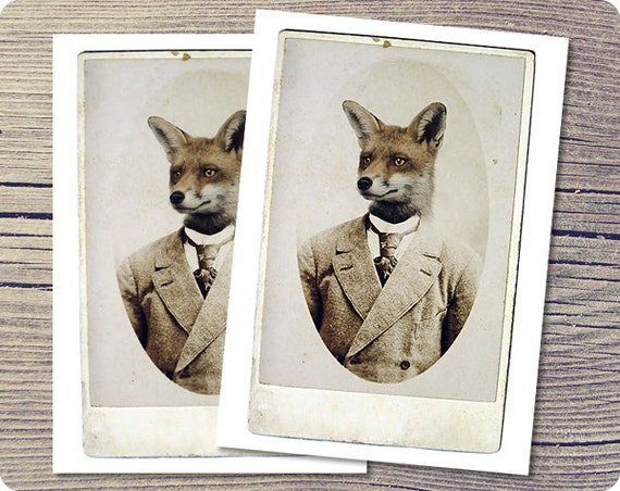 Fox Postcard, Young Mr. Fox, 5x7 Postcard