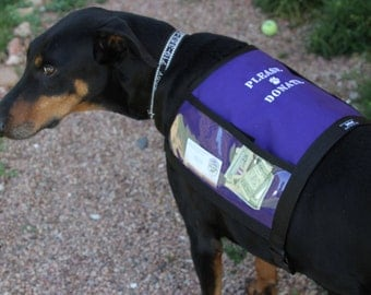 PLEASE DONATE Fundraising Dog Vest with large clear pockets for donations, Size Large - PURPLE