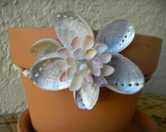 Terra Cotta Planter with Abalone shells and Coquina shell flower