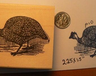Guinea Hen rubber stamp WM P10