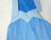 Blue sleeping beauty dress