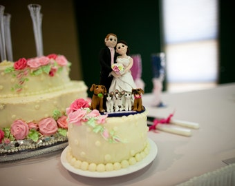 Bride and Groom Themed Wedding Cake topper