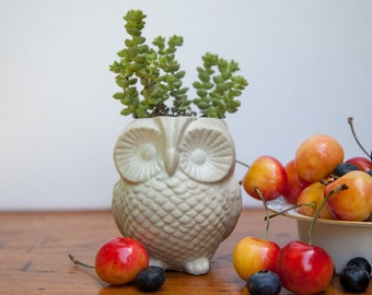Owl Planter - Cast Cement, concrete handmade garden decor