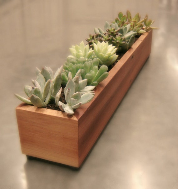 Indoor Planter Box Ideas: Modern Wood Planter Box Indoor Window Planter By