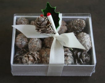 Mini Sugar Frosted Holiday Pinecones - Miniature Glittered Pine Cones - Woodland Pine Cones for Ornaments - Snow Covered Winter Cones