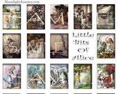 LITTle Bits of ALICE in wonderland collage sheet rectangle dodo rabbit hatter walrus oval queen of hearts