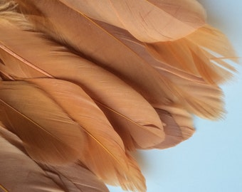 GOOSE FEATHER FRINGE, Pumpkin, Burnt Orange, Tangerine, Terra Cotta / 467