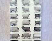 Sheep and pigs tin, pill box, treasure box