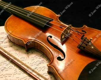 Violin Concerto Music Classical Instrument Original Fine Art Photography Photo Print