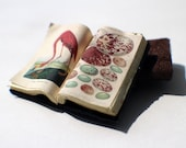 Miniature Open Book --- Flamingo and Bird Eggs