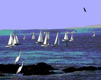 Blue Sailboat Art, Nautical Sailing, Water Regatta Race, Outdoor Sports Event, Birds Eagle Heron, Home Decor, Wall Hanging, Giclee Print