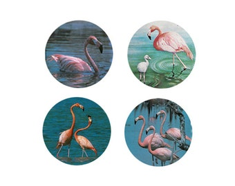 Flamingo Magnets:  4 Magnificant Flamingos - For your home, your collection,  or to give as a unique gift