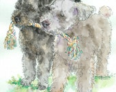 PUMI PAIR Original Watercolor on Ink Print 11X14 Matted Ready to Frame
