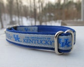 University of Kentucky Cat  or Small Dog Collar with Option of Blue or Pink Backing