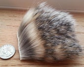 Fur Pieces- Pick your Species- Exotics, African, North American and Domestics - 4x4 inch Piece