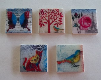 Turquoise and Pink--Nature--Cat-Roses-Butterfly-Bird-Tree-- Magnet Set-Magnets