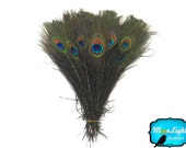 Wholesale Peacock Feathers, 100 Pieces - NATURAL Peacock Tail Eye Feathers (bulk) : 1314