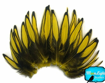 Love Drop Feathers, 1 Dozen - YELLOW Laced Hen Cape Feather  : 3434