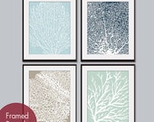 Underwater Sea Coral Collection (Series C) -Set of 4 - Art Prints - Featured in Glacier Blue, Navy, Truffle Brown and Silver Sage