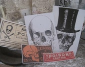 NEW spooky halloween assorted labels peel and stick skulls poison skeleton
