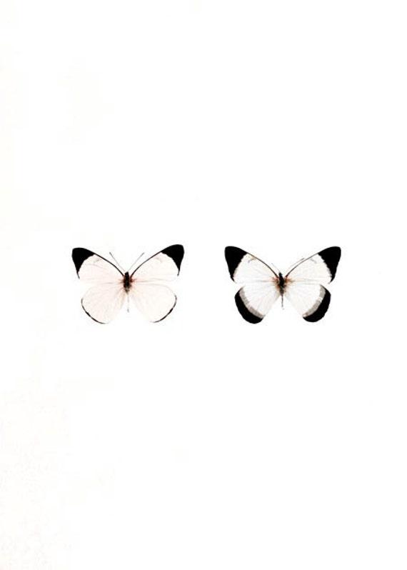 Girl Nursery Decor, White, Peach, Butterflies, Pastel Decor, Nature Photography, Pastel Butterflies, Minimalist