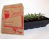 Seed Saver Envelopes