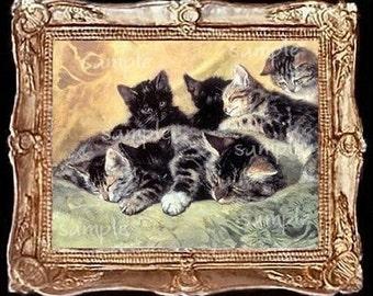 Cat Cats Kitten Miniature Dollhouse Art Picture 1185