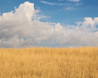 Sky and Field Bright Color Photograph, Montana Sky, Minimalist Landscape Art
