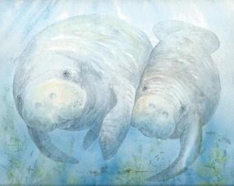 PRINT 8 x 10 manatee calf bowman open edition seacow portrait blue green wall art reproduction mermaid
