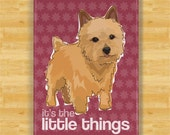 Norwich Terrier Fridge Magnet - It's The Little Things - Cute Norwich Terrier Refrigerator Magnet Gift