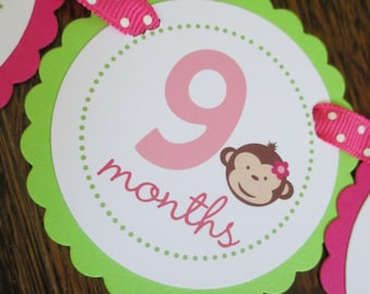 READY to SHIP Mod Monkey Collection: Just Born/0-12 mos Picture Banner. Monkey GIRL First Birthday Banner. Hot Pink & Lime. Flower.