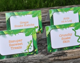 Reptile Food Buffet Label Cards - Reptile Birthday Decorations - Orange, Green and Brown