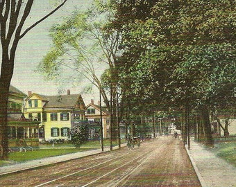 Elm Street PUTNAM Connecticut Dirt Road Horse and Buggy Stately Homes S Langsdorf Publisher Vintage Postcard