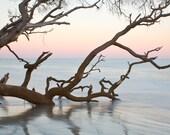 First Light - Hunting Island Sunrise - Square and Rectangular Sizes