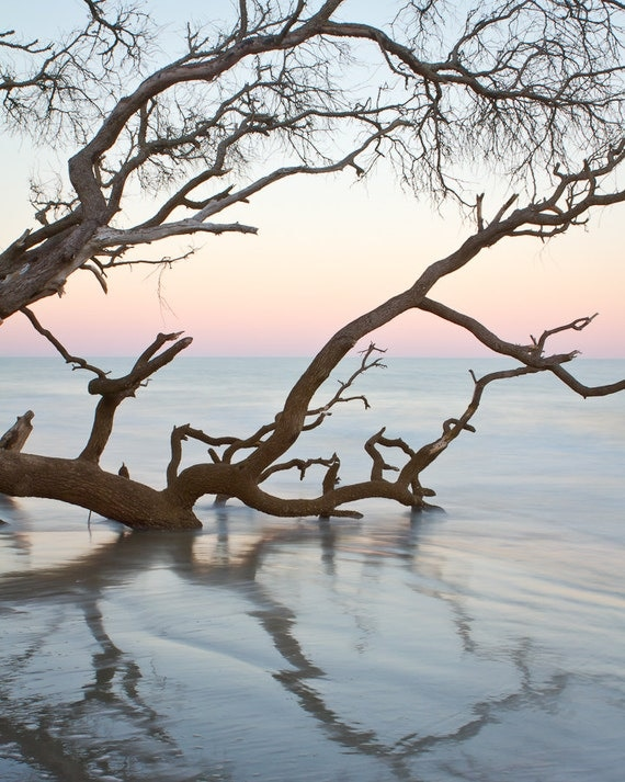 First Light - Hunting Island Sunrise - Square and Rectangular Sizes