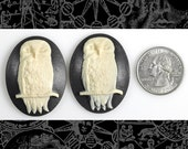 Owl Cameos - Two Black and Ivory 30x40mm Resin Cameos XXX CAM121