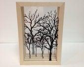 Tree Shadow Box