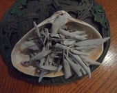 White Sage Smudge Kit with Sea Shell