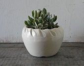 vintage white pottery planter with leaf motif garden inspired