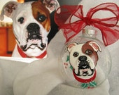 Painted Ornament Animal Cartoon  Pet Portrait   Custom Personalized Cat Dog