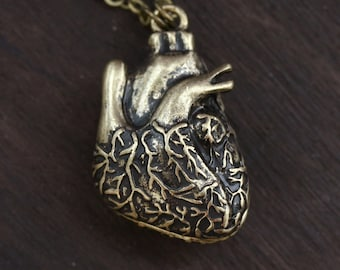 Anatomical Heart Necklace - Steampunk