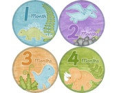 Monthly Stickers, Boys Photo Props, Monthly Baby Stickers, Monthly Baby Photos, Baby Gift, Milestone Stickers, Dinosaurs (B058)