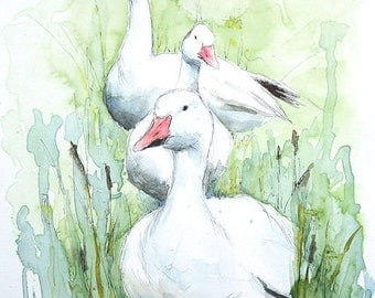 THREE WHITE GEESE original watercolor and ink painting