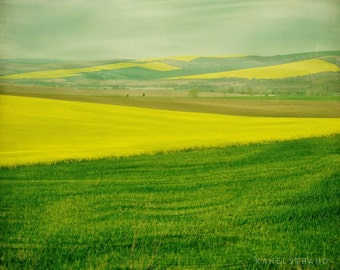 Nature art print, travel photography, the fields in spring, landscape photo, Scandinavian art