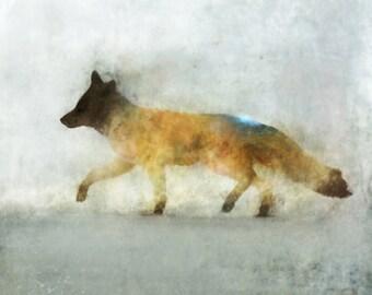 Fox Hunt 01: Giclee Fine Art Print 13X19