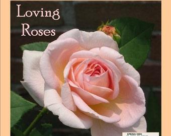 Magazine Bag Duct Tape DELIGHT Loving Roses