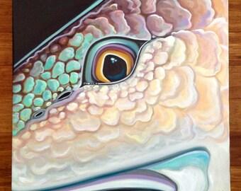 Redfish Eye Original oil painting
