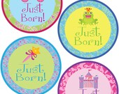 ADD ON Just Born Stickers for Baby, Just Born Stickers  - Princess Damask - Just Born Stickers -Baby Shower Gift - Baby
