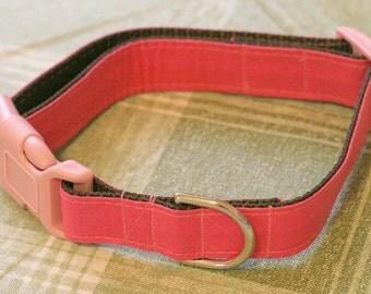 "Ready To Ship - 1"" LARGE Designer Dog Collar - Shortcake Brownie"