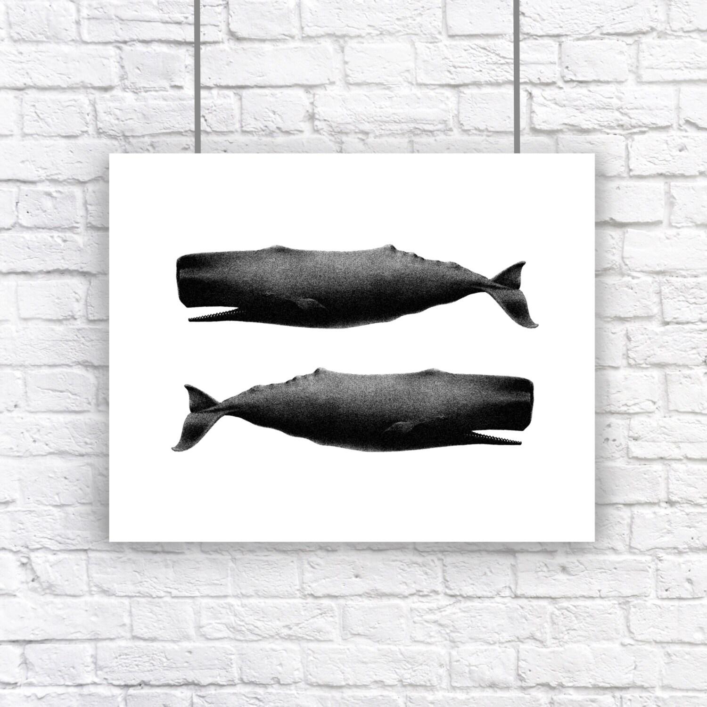 Vintage Nautical Decor Sale: Large Twin Whales Nautical Vintage Style Art Print Beach House
